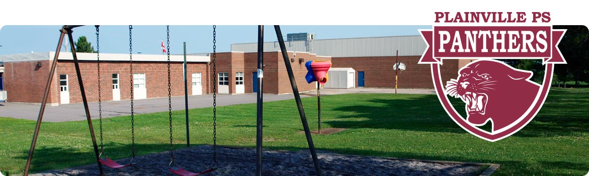 This is a picture of swing set and playground