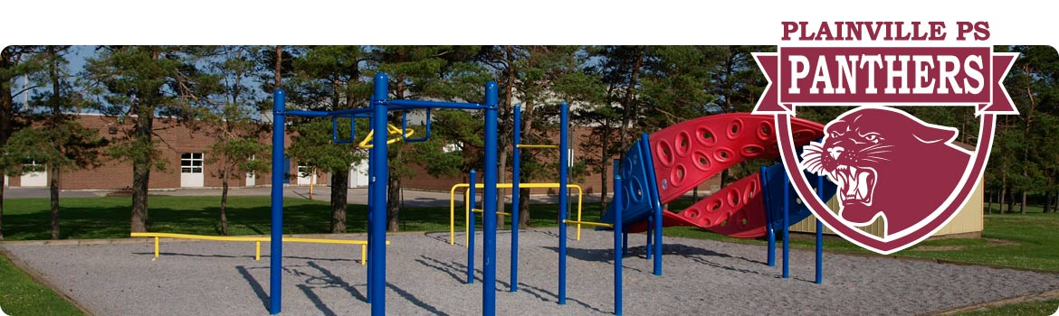 This is a picture of our playground structures.  They are very popular with our students.